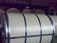 Galvanized steel coil3